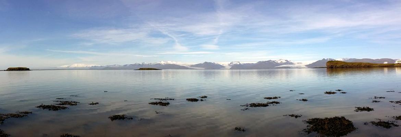 Panorama Islanda del Sud