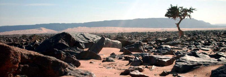 Mauritania-in-camper-il-deserto-pietroso-e-le-sinuose-dune