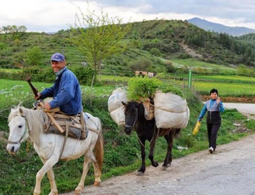 Albania in camper… l'ultimo segreto d'Europa