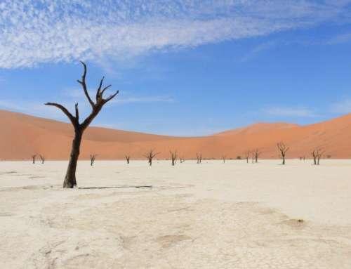 Namibia – novembre 2016