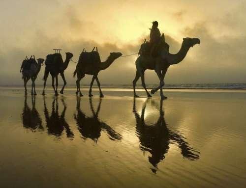 Marocco in camper – agosto 2017